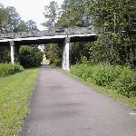 Jax-Baldwin Trail