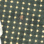 Carpet with spider