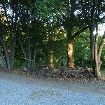 angoletto di bosco adiacente