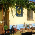 Mantella Taverna