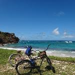 You can ride bicycles all over the island to find the perfect snorkle spot