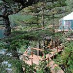 Puffin cabin