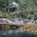 footbridge and Stellar Jay cabin
