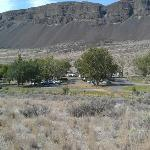 RV area - lot of trees