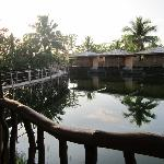 bungalow rooms/fish pond area