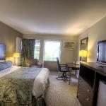 The deluxe queen at Americana Hotel Crystal City is great for business travelers!