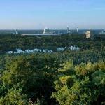 half of the city of berlin is grunewald forest