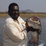 Max fishing guide with 20lb vundu, safely released