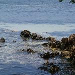 rocky side of island