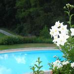 piscina e dintorni