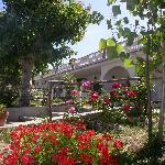 Photo of La Formichina