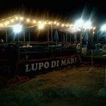 Photo of Lupo Di Mare
