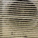 Ventilateur de la salle de bain