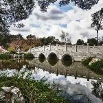 Bridge at the Chinese Garden