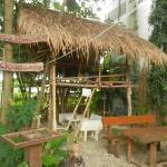 The hostel garden area.