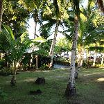 View towards the pool from our fale. number one.