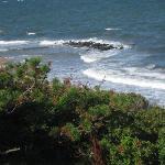 The shoreline at Kysthusene