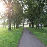 """Morning walk on """"The Common"""""""