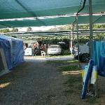 Camping Delfino Foto