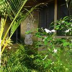Garden - Buddha Wall Mural