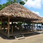 Au bord de la rivere NAPO