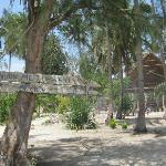 MOTOPWANI Michamvi Kae Zanzibar