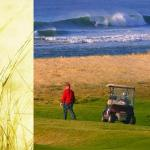 Surf and Golf...