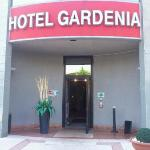 Gardenia Foto