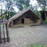 Chief's enclosure
