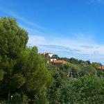 vue de la terrasse en journée