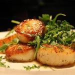 Pan-seared Sea Scallops