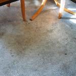 Carpet stains...