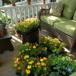 Three Porches offer Guest Seating