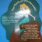 Legend of Mermaids...