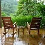 private balcony overlooking the rainforest