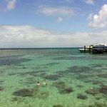 Low tide off the Green Is pier