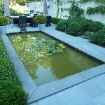 le petit jardin en bord du canal