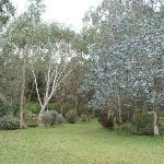 In the gardens, Plas Newydd