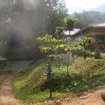 Building and Garden