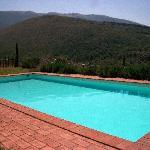 La piscina dell'agriturismo.