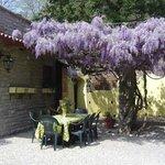 Foto de Villa Pellegrino