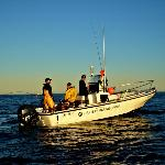 20-foot Boston Whaler Outrage fishing option