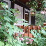 Photo de Girdwood Guest House