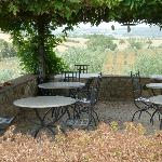 Outdoor Dining Under Wisteria