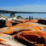 Bay of Fires - Orange Lichen on Rocks
