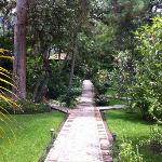 Walkpath
