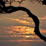 """Sunset...a little """"Out of Africa"""" - but it really was Hawai'i!"""