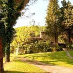 Castellare view