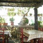 Below the wisteria covered pergola