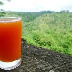 Fresh Breakfast Papaya Juice